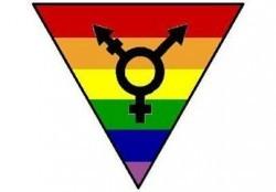 transgender_symbol-13349
